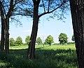 Hermsdorf - Grünberg - panoramio.jpg