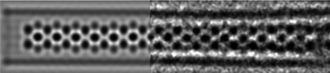 Nanowire - A noise-filtered HRTEM image of a HgTe extreme nanowire embedded down the central pore of a SWCNT. The image is also accompanied by a simulation of the crystal structure.
