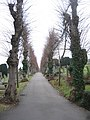 High Wycombe Cemetery - geograph.org.uk - 1474541.jpg