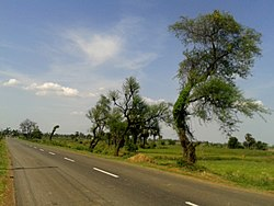 Hiramandalam Road at Dannanapeta