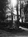 Holiday house, woods Fortepan 12070.jpg