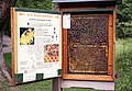 Honey bee box 2.jpg