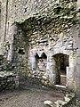 Hore Abbey, Caiseal, Éire - 45671381025.jpg