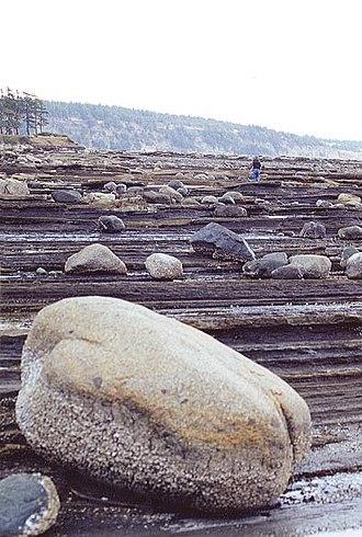Hornby Island - A rocky beach on Hornby Island