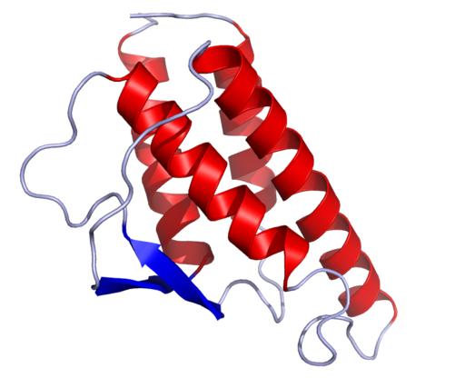 IL4 Crystal Estructura recombinant