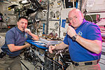 ISS-44 Scott Kelly and Kjell Lindgren with own crop.jpg