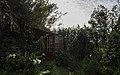 Ilha das Flores P5250017 (35621109610).jpg