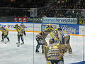 Ilves vs. SaiPa Feb 3 2007.jpg