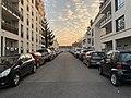 Impasse Baraille (Lyon).jpg