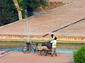 India-0167 - Flickr - archer10 (Dennis).jpg