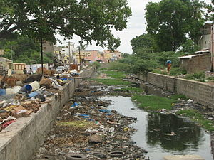 Water pollution in India - Image: India Sights & Culture garbage filled canal (2832914746)
