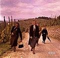 Iz Metlike se v nedeljo vračajo domov v Drašiče 1965.jpg