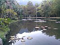 Jardim Botânico do Rio de Janeiro 11.jpg