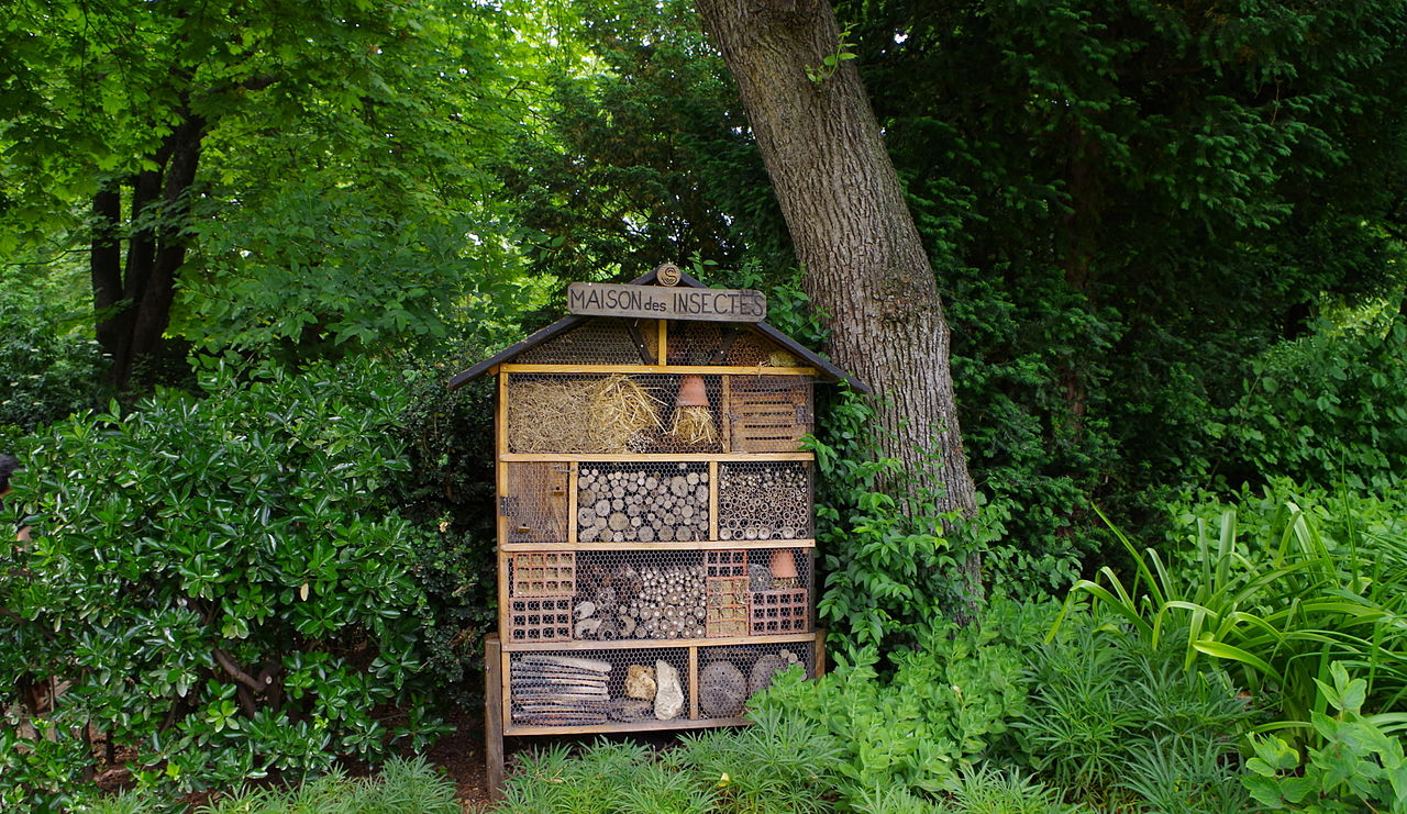 File jardin du luxembourg la maison des insectes jpg for Buvette des marionnettes du jardin du luxembourg