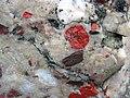 Jasper pebbles in quartzite (Lorrain Formation, Paleoproterozoic, ~2.3 Ga; Ottertail Lake Northeast roadcut, near Bruce Mines, Ontario, Canada) 19 (32765775147).jpg