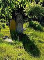 Jewish cemetery Otwock 10779389.jpg