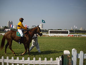 Mahalaxmi Racecourse - Jockey B. Prakash on Fractious Fav Secret Memory.