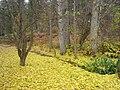 John A. Finch Arboretum - IMG 6865.JPG
