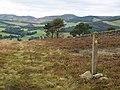John Buchan Way, near Easter Dawyck - geograph.org.uk - 571645.jpg