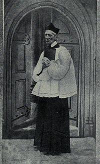 john henry newman essays Encuentra essays: critical and historical v1 (1890) de cardinal john henry newman (isbn: 9781164043904) en amazon envíos gratis a partir de 19.