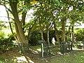 Joodse begraafplaats in Den Nul bij Olst.jpg