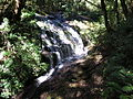 Kew Mae Pan Nature Trail Waterfall.jpg