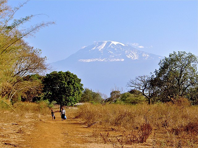Paisaje de sabana cerca del Monte Kilimanjaro
