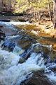 Kitchen Creek at Kitchen Creek Falls 1.JPG