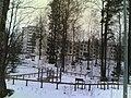 Kontukuja - panoramio (10).jpg