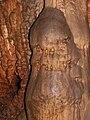 Korea-Danyang-Gosu Cave 3179-07.JPG