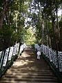 Kumano Kodo Kumano Hongu Taisha World heritage 熊野本宮大社04.JPG