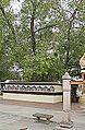 L'arbre de l'Eveil (Pipal) à Sârnâth (8474933738).jpg