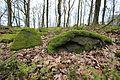 "LSG ""Kirchberger Granit"" ...2H1A7456WI.jpg"