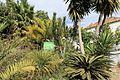 La Palma - Los Llanos - Calle San Antonio - Llano de Argual 10 ies.jpg