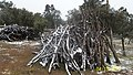 La lena del condor - panoramio.jpg