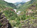 La vallée du Var à l'entrée des gorges du Daluis.JPG