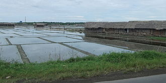 South Sulawesi - Salt evaporation ponds in Jeneponto, South Sulawesi