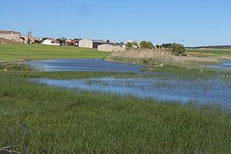 Laguna Chica de Corral Rubio (Albacete) con el pueblo al fondo.jpg