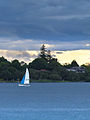 Lake Taupo Sailer (6474127645).jpg