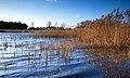 Lake at Messingham Sand Quarry Nature Reserve - geograph.org.uk - 737099.jpg