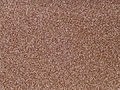 Lalibela-Teff.jpg