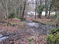 Langley Burn, Langley - geograph.org.uk - 1725407.jpg