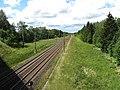Lazdėnai 21400, Lithuania - panoramio (1).jpg