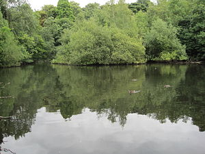 Moat Mount Open Space - Image: Leg of Mutton Pond