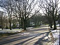 Lister Park - viewed from Emm Lane - geograph.org.uk - 1070807.jpg