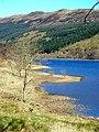 Loch Lubnaig Shoreline - geograph.org.uk - 394838.jpg