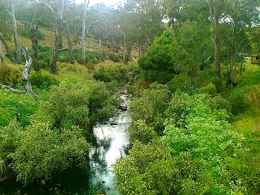 Loddon River at Vaughn Springs - panoramio