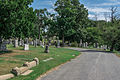 Looking SSE up West Tour Road - Glenwood Cemetery - 2014-09-14.jpg