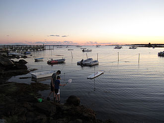 Lords Point, Connecticut - Catching crabs at Boulder Beach - Lords Point, 2013.