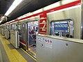 Low-height platform screen door in Shinsabashi Station.jpg